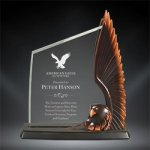Acrylic & Resin Eagle Eagle Resin Trophy Awards