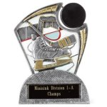 Large Spin Award -Hockey Spin Resin Trophy Awards